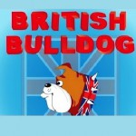конкурс British Bulldog